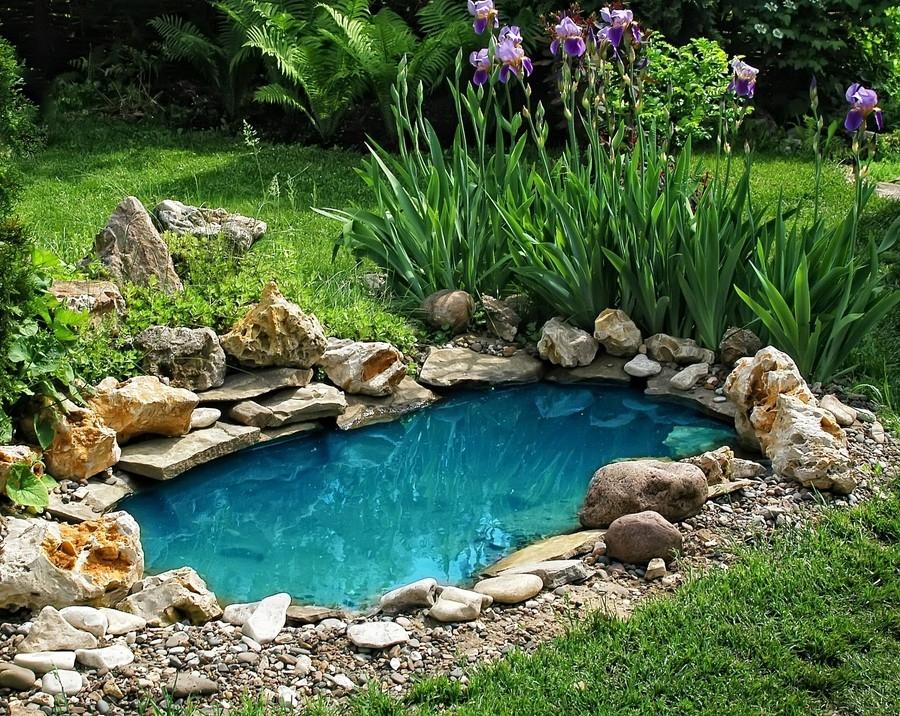 czytaj dalej artykuł: Oczko wodne w ogrodzie